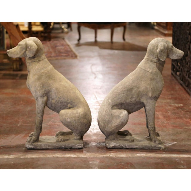 French Large French Carved Stone Verdigris Patinated Labrador Dog Sculptures - a Pair For Sale - Image 3 of 9