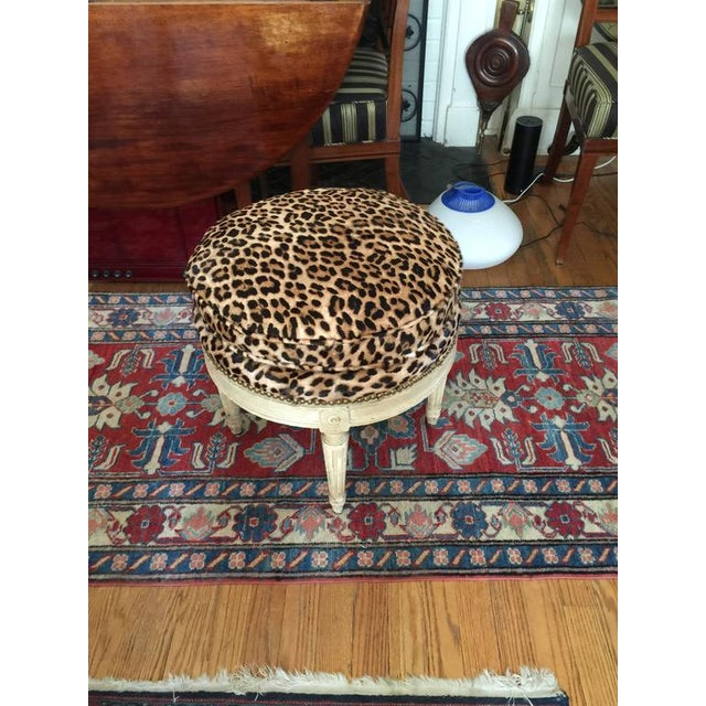 Louis XVI Style Stool in the Manner of Maison Jansen, 20th Century For Sale In New York - Image 6 of 7