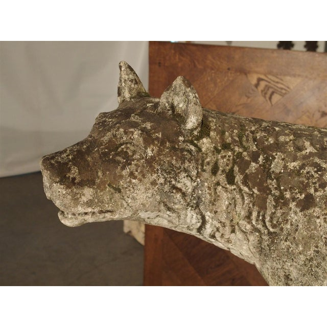 Superior Antique Statue of the Capitoline Wolf of Rome, Carved ...