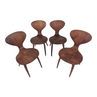 Set of Norman Cherner Dining Chairs For Sale
