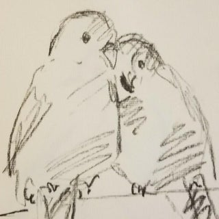 Two Lovebirds Charcoal Drawing Preview