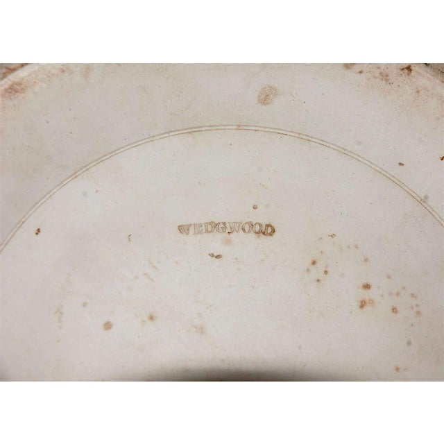 Late 19th Century 19th Century English Wedgwood Stamped Jardinieres - a Pair For Sale - Image 5 of 7
