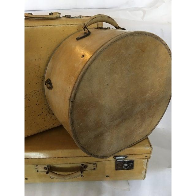 Vintage English Vellum Suitcases & Hat Box - Set of 3 - Image 4 of 11