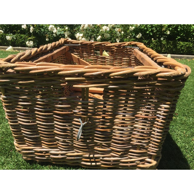 Antique French champagne basket. Procured in south of France by my family in the late 70s and shipped home. Substantial...