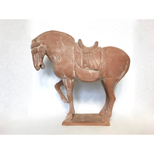 Tang Dynasty Terra-Cotta Pottery Horse Statue - Image 7 of 7
