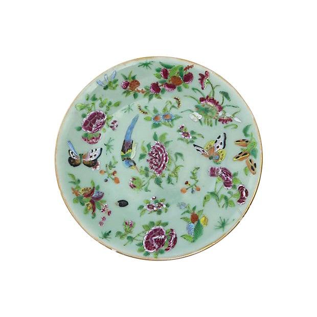 Antique Celadon Plate W/ Flowers For Sale