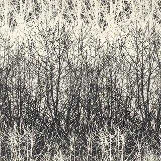 Sample - Schumacher X Vera Neumann Birches Wallpaper in Black / White Preview