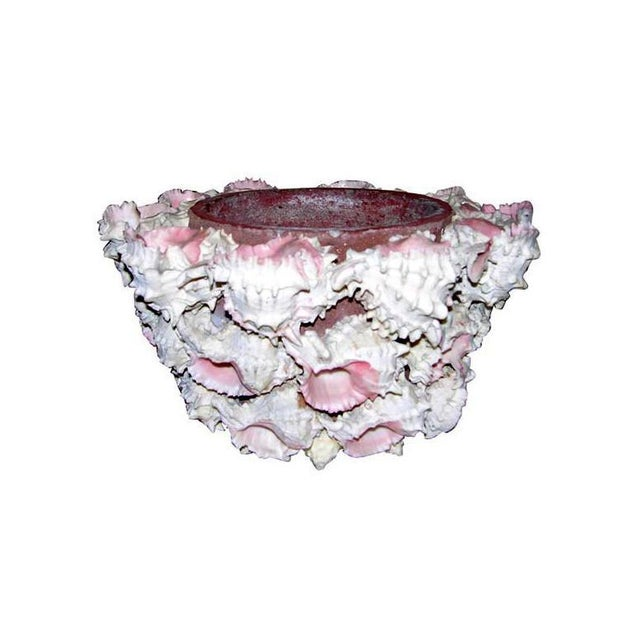 1960s Vintage Shell Encrusted Flower Planter For Sale In New York - Image 6 of 6