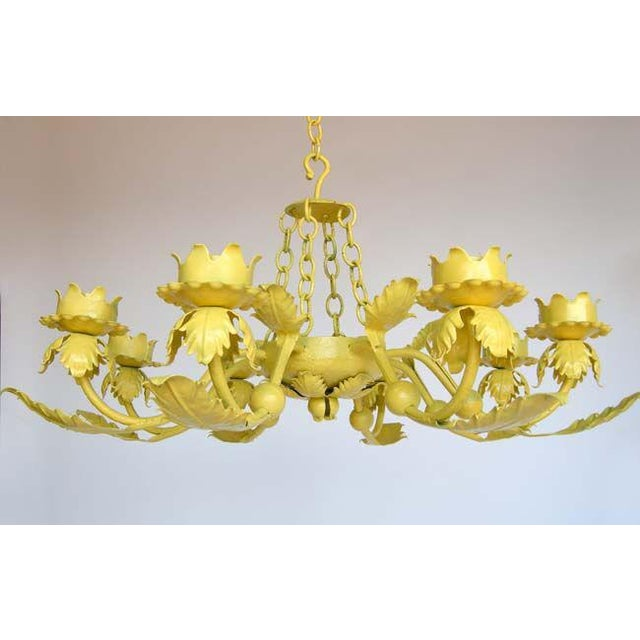Hand wrought iron leaf iron chandelier in a happy yellow! Eight arms. Can be electrified.
