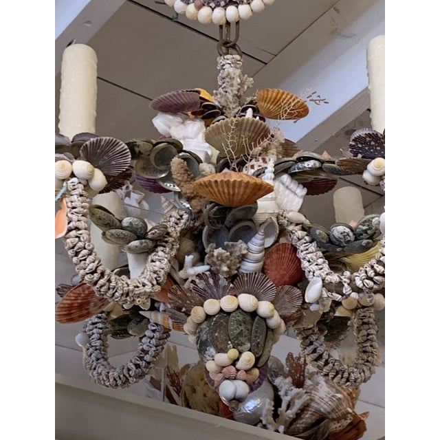 Tiny Rainbow Shell Chandelier For Sale In West Palm - Image 6 of 9