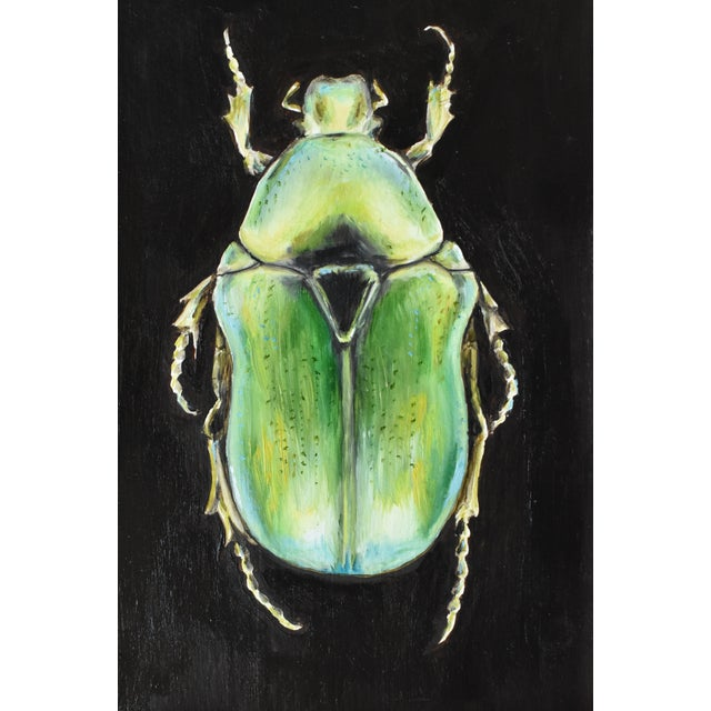 Contemporary Oil Painting of a Beetle by Susannah Carson For Sale In San Francisco - Image 6 of 7