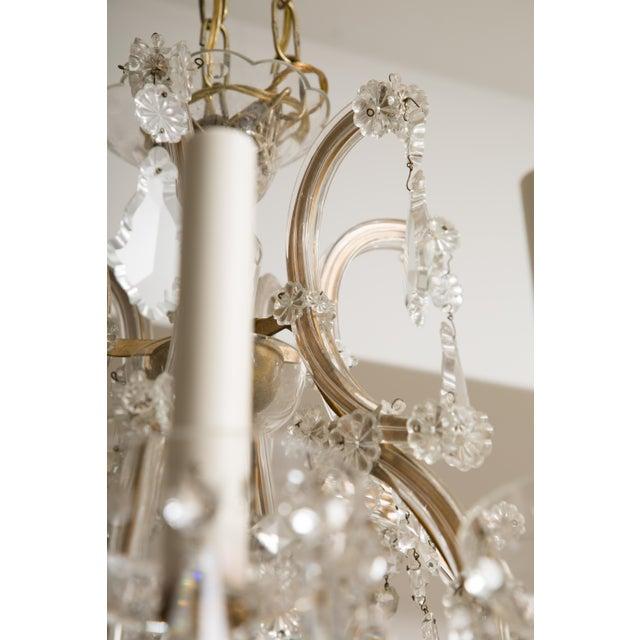 Traditional Vintage Maria Theresa Twelve-Light Chandelier For Sale - Image 3 of 11