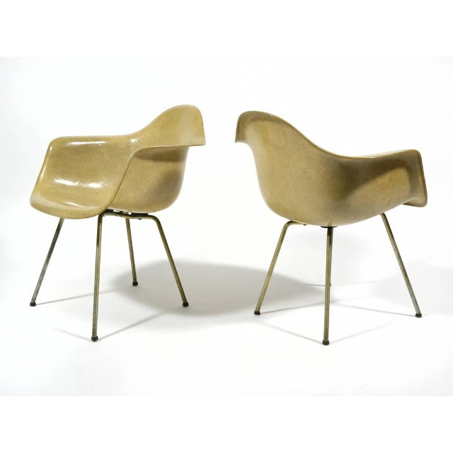 Pair of Eames SAX Armchairs by Zenith Plastics for Herman Miller - Image 7 of 11