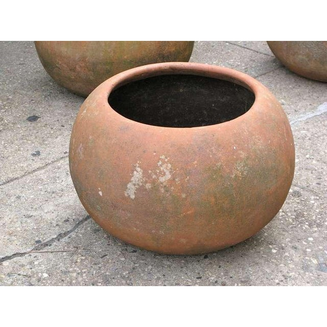 Mid-Century Mexican Terracotta Pots - Image 9 of 10