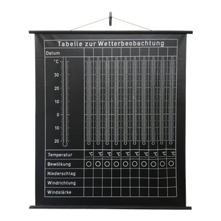 Vintage German School Weather Chart For Sale