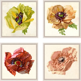 Pignier, Flowerhead, Framed Artwork - Set Of 4 For Sale