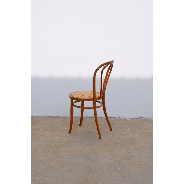 Bentwood Set of Four Large Slender Bentwood Dining Set by Thonet For Sale - Image 7 of 9