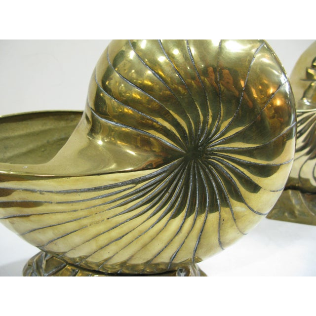 Vintage Huge Brass Nautilus Seashell Planters - a Pair For Sale - Image 4 of 14