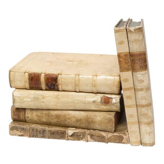 17th Century Vellum Books - Set of 6