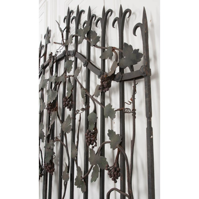 "Pair of French Early 20th Century Painted Wrought-Iron ""Grapevine"" Gates For Sale - Image 10 of 13"