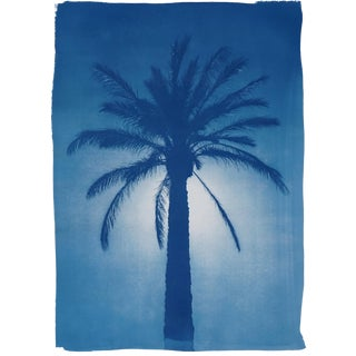 Modern Blueprint Titled: Cairo Citadel Palm. Oasis Landscape, Limited Edition Cyanotype Handprinted on Watercolor Paper. 50x70 CM , 20x28 Inch For Sale