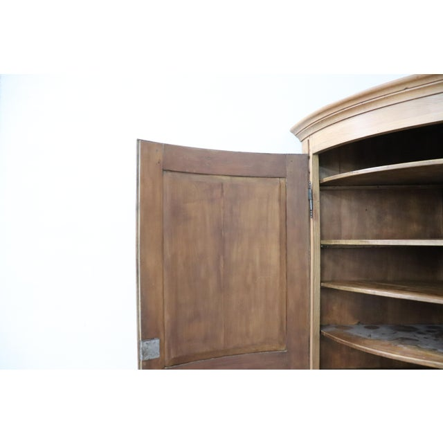 Brown 19th Century Italian Solid Chestnut Large Corner Cupboard or Corner Cabinet For Sale - Image 8 of 11