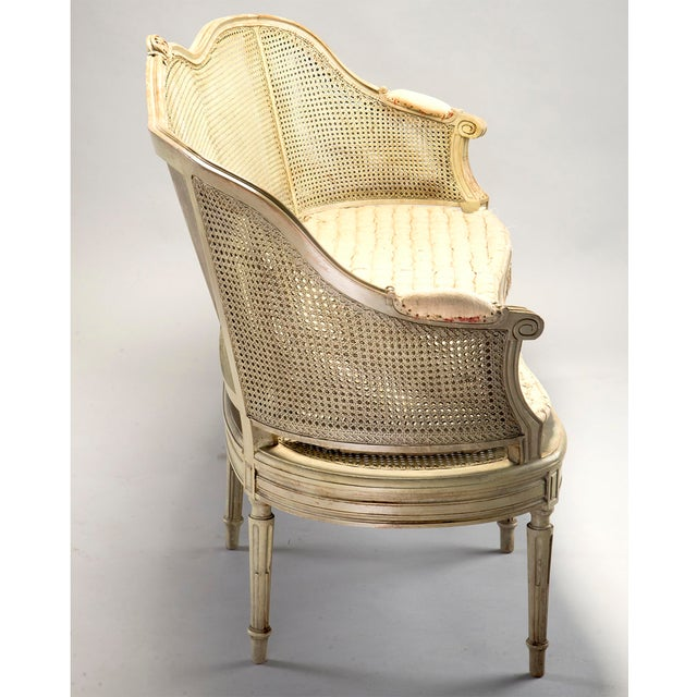 French Painted Louis XVI Style Large Caned Settee With Original Cushion For Sale - Image 3 of 11