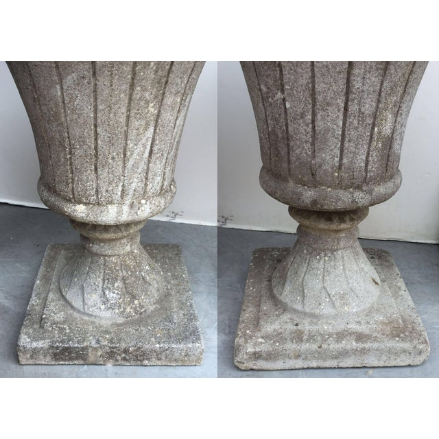 Stone Gray English Garden Stone Urns - a Pair For Sale - Image 8 of 11