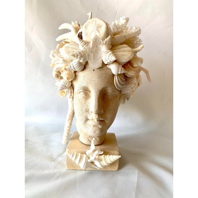 Hygiea Shell Encrusted Head For Sale - Image 9 of 9