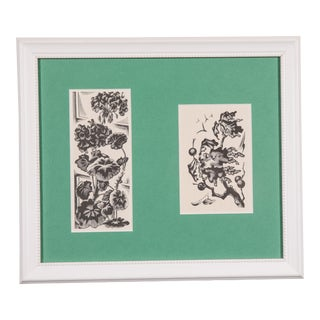 1940s Vintage Framed Botanical Prints For Sale