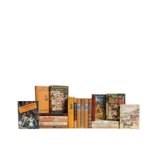 Children's Canyon Classics - Set of Twenty Decorative Vintage Books