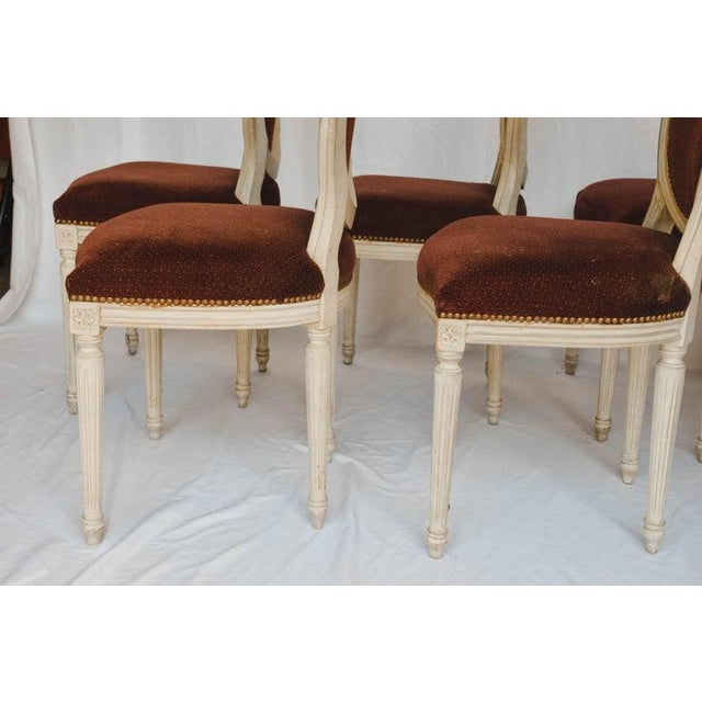 Set of 6 French Chairs For Sale - Image 10 of 13