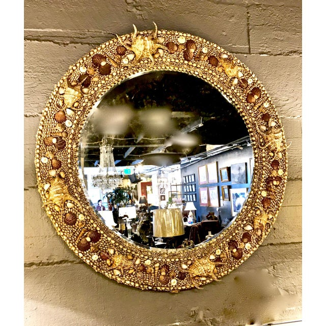 Glass Late 20th Century Vintage Maitland-Smith Shell Mirror For Sale - Image 7 of 7