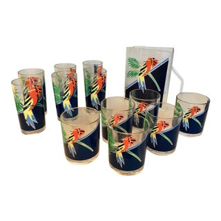 Lucite Pitcher & Glasses with Parrots - Set of 12