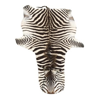 Authentic Vintage Zebra Rug - 4′4″ × 7′ For Sale