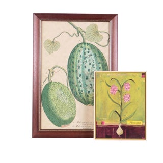 Hand Colored Botanical Watermelon Etching With an Offset Floral Lithograph - Set of 2