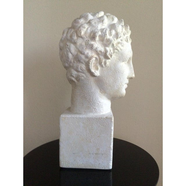 Lifesize Plaster Bust of Hermes For Sale - Image 4 of 11