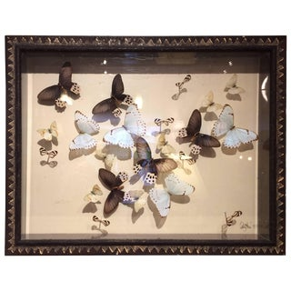 Magnificent Handmade Collection of Butterflies in Shadow Box For Sale