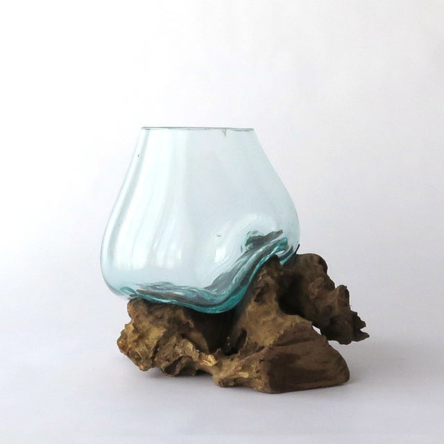 Glass on Teak Driftwood Terrarium - Image 4 of 7