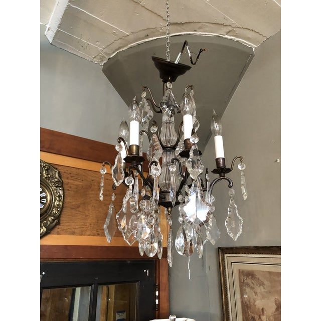Brown Vintage Petite Marie Therese Crystal Chandelier For Sale - Image 8 of 9