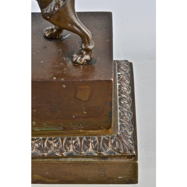 Bronze Poodle Inkwell, France 19th Century For Sale - Image 9 of 12