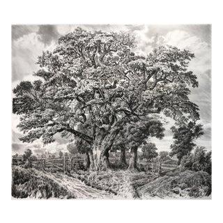 Large Oak Print