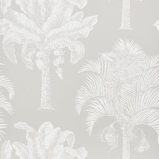 Sample - Schumacher Grand Palms Wallpaper in Dove For Sale