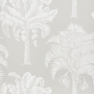 Sample - Schumacher Grand Palms Wallpaper in Dove For Sale