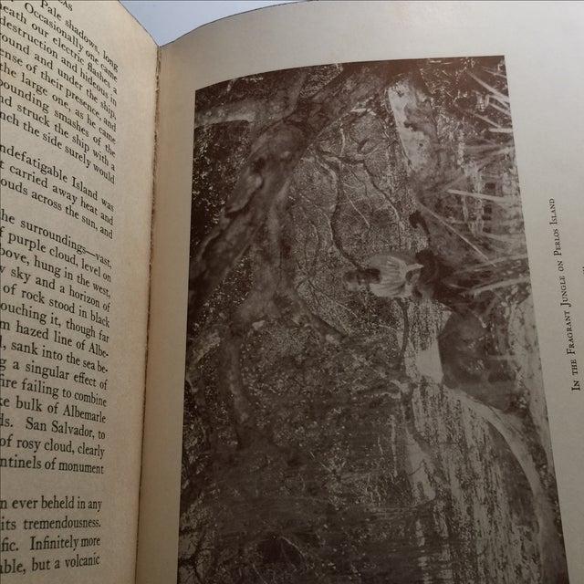 "1925 ""Tales of Fishing Virgin Seas"" by Zane Grey - Image 7 of 11"