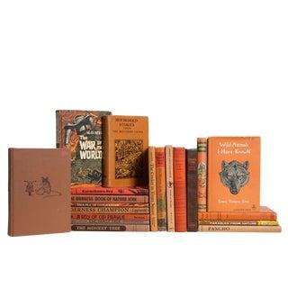 Children's Cinnamon Book Set, S/20 For Sale