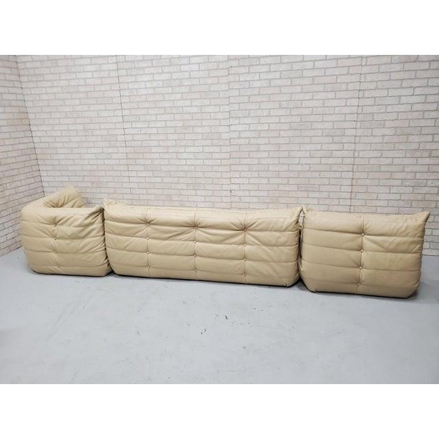 Mid Century Medern Togo Sofa Set by Michel Ducaroy for Ligne Roset - 5 Piece Set For Sale In Chicago - Image 6 of 11