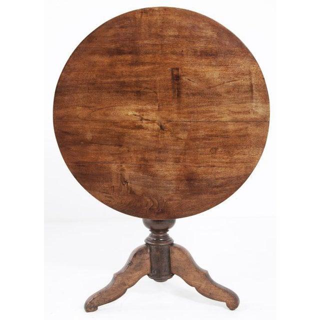 Circa 1850 Swiss Walnut Tilt Top Tea Table For Sale - Image 5 of 11