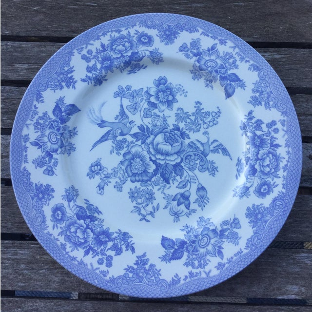 Royal Stafford Royal Stafford Light Blue & White Fine Earthenware Plate For Sale - Image 4 of 4
