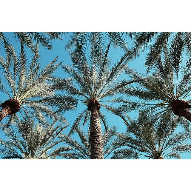 Beverly Hills - Archival Pigment Print on Fine Art Matte Paper by Reed Hearne For Sale